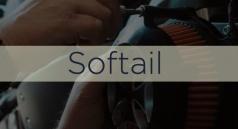 Ton Softail
